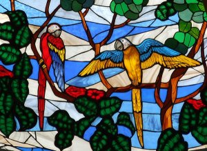parrots-stained-glass